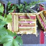 Recette tartelette rectangulaire à la rhubarbe bio pour le thème de Culino Versions