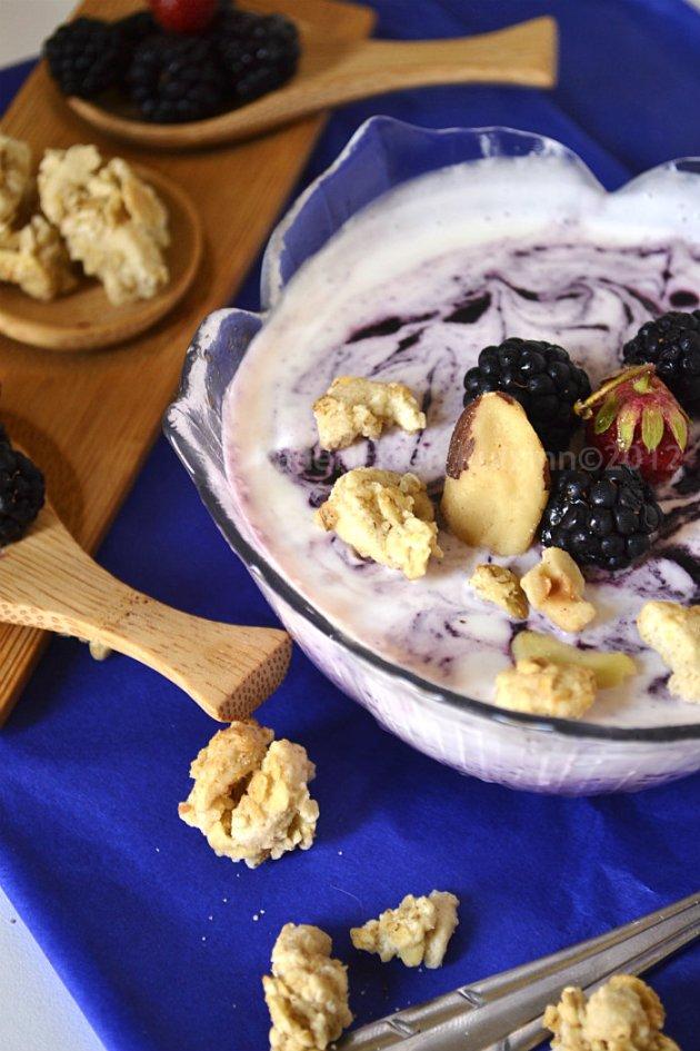 Dégustation glace au yaourt grec avec des mûres sauvages & fraises pour un dessert frais et léger sur Kaderick en Kuizinn©