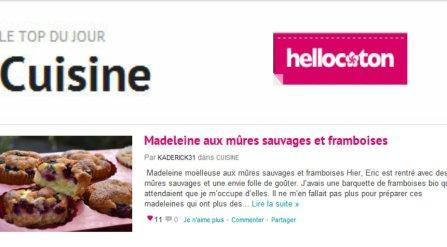 Top jour cuisine Hellocoton 06.09.12 madeleine aux mûres sauvages et framboises bio - Kaderick en Kuizinn©
