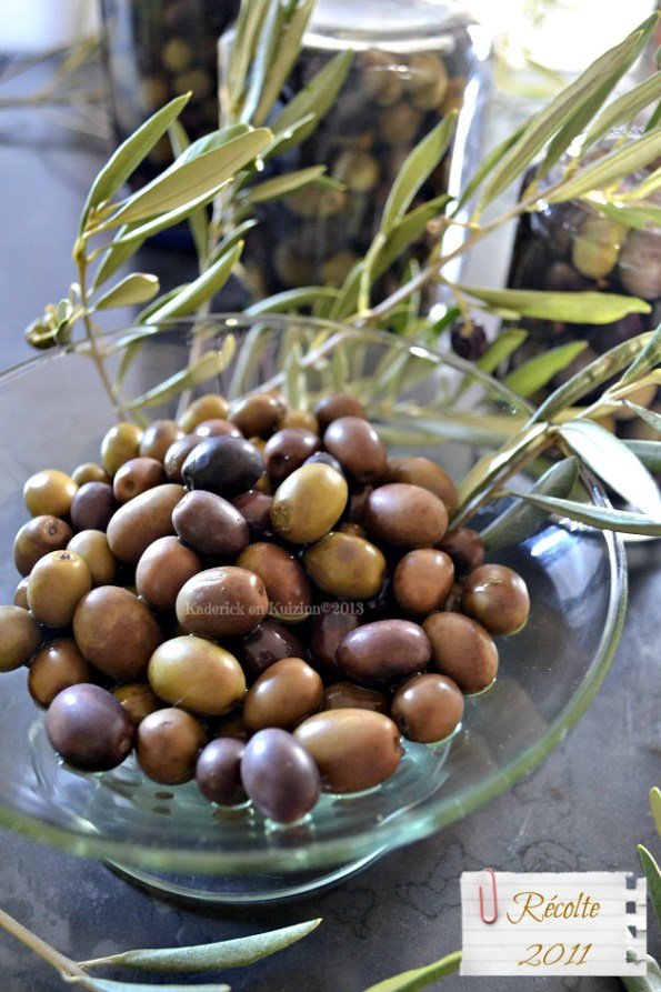 Dégustation des olives vertes et noires de notre jardin en saumure fait maison - Kaderick en Kuizinn©2013