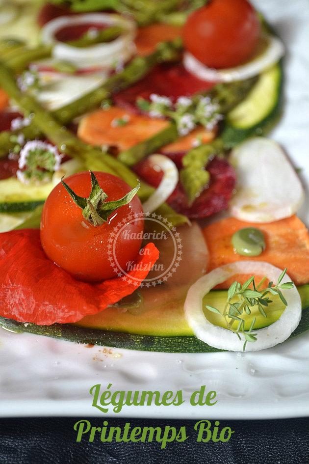 Légumes de printemps en tartare et vinaigrette basilic