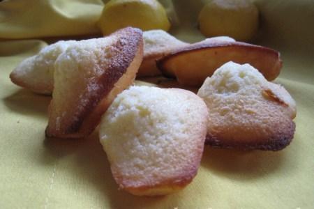 madeleines-citron-KK-3w-1024x768
