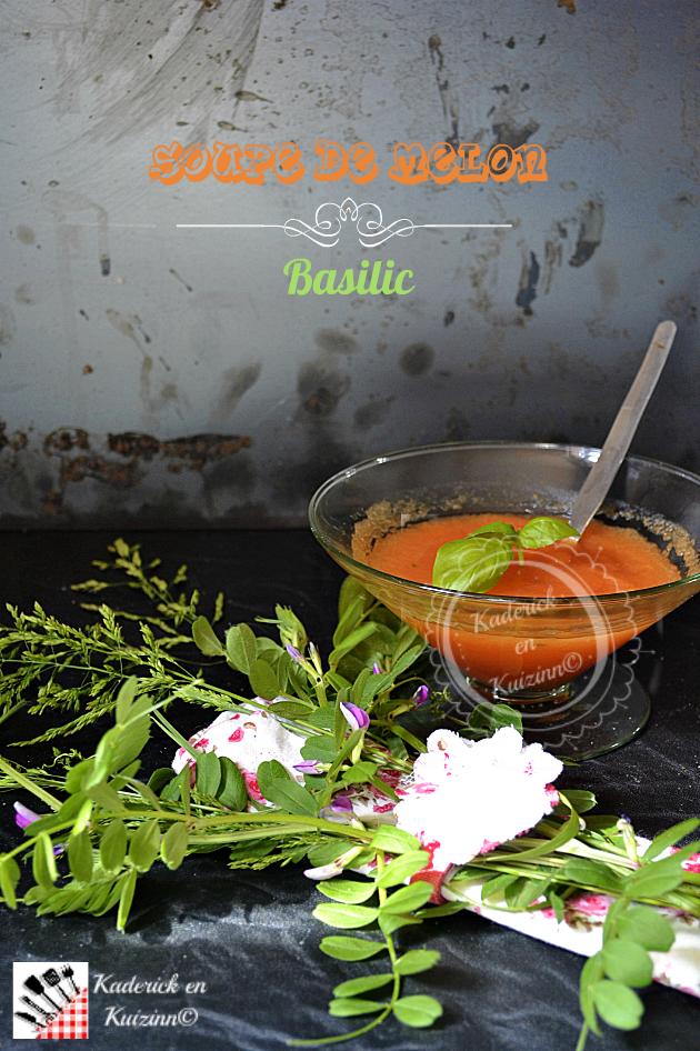 Dégustation soupe froide de melon bio au basilic frais