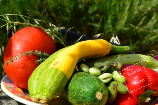 Legumes bio de la ratatouille et herbes fraîches du jardin pour une recette plancha d'été végétarienne