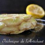 Technique artichaut camus tourné pour Prince de Bretagne