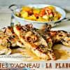 Agneau plancha - Côtes d'agneau au curry poêlée de pâtisson