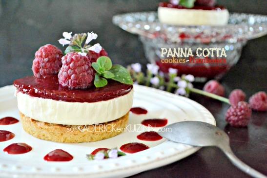 Panna cotta recette - Panna cotta noix de coco et framboise