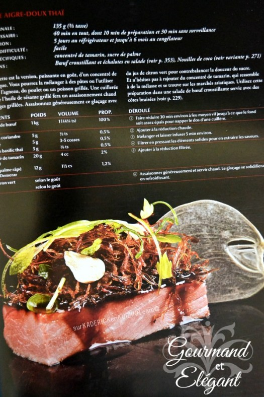 Jour 9 Calendrier de l'avent 2014 chez Kaderick en Kuizinn© Modernist Cuisine at home