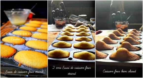 Test : Différentes cuisson madeleines glacées four éteint ou four chaud