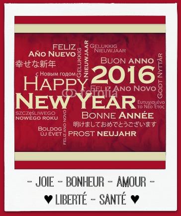 Bonne annee 2016 joie bonheur amour liberte sante