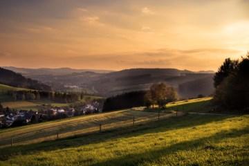 landscape ©