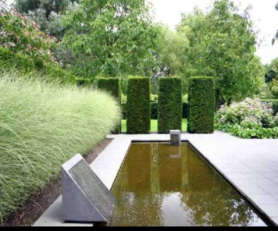 Best way to cut a privet Hedge, picket-fins-topiary,