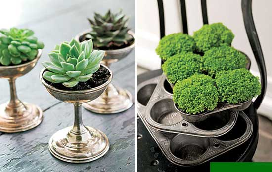 Planter, Ideas,
