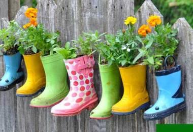 Planter Ideas,