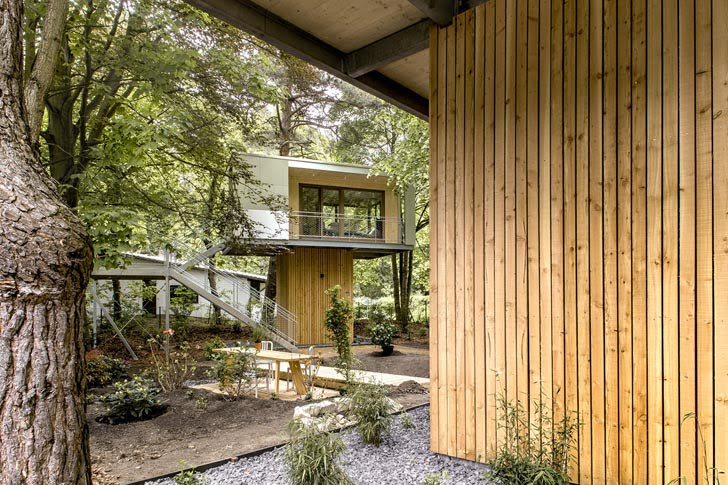 tree house ideas, tree houses to live in, tree house design, modern tree houses, coolest treehouse in the world, cool tree houses, modern tree homes,