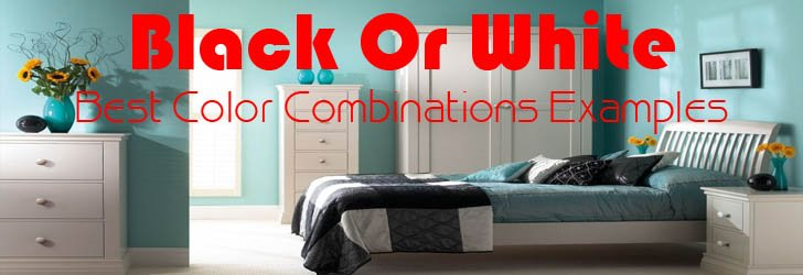 Best Color Combinations Examples With Black Or White For House Interiors