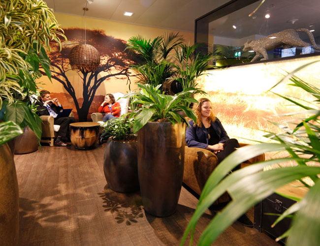 safari lounge interior