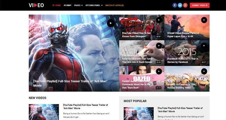 best video wordPress theme,