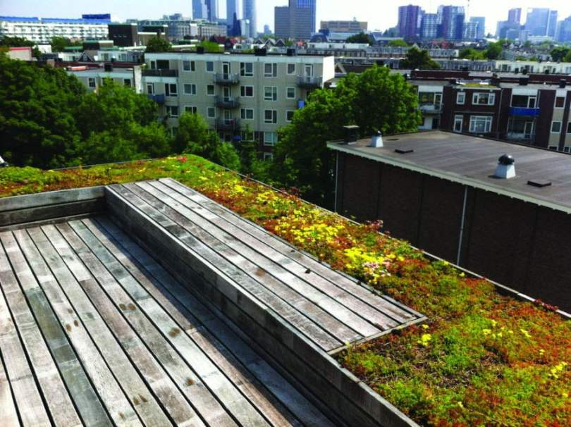 roof top garden with penthouse in germany