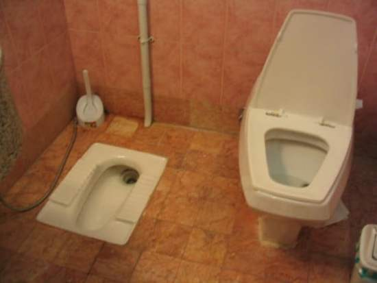 Whats Your Position with Squat vs Sitting Toilet WC Seat
