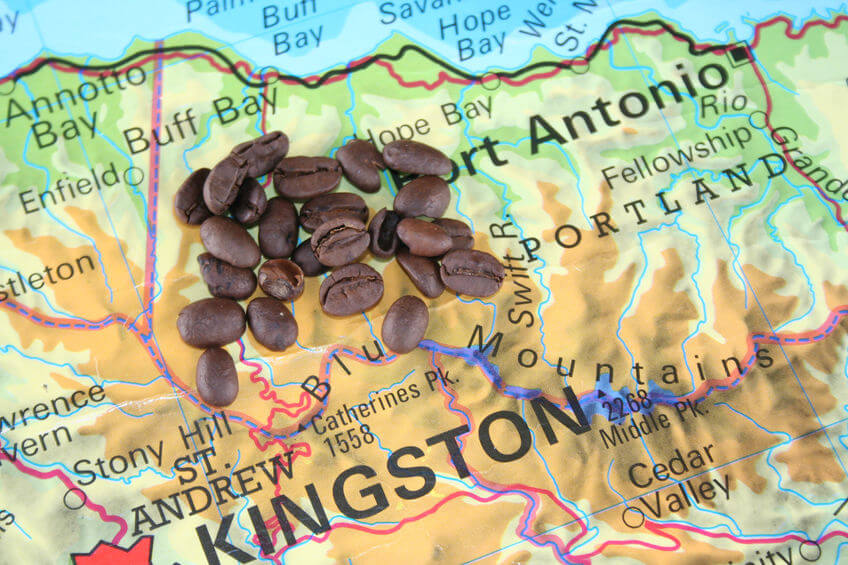 kaffee aus jamaika header
