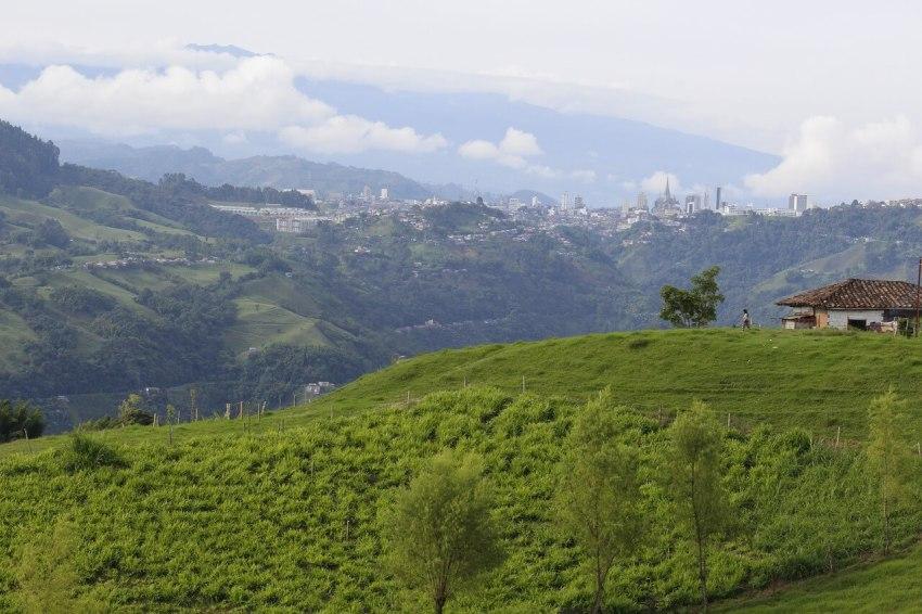 höhenlagen kaffee kolumbien