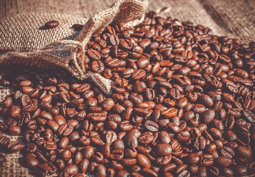kaffee nicaragua bio-zertifiziert