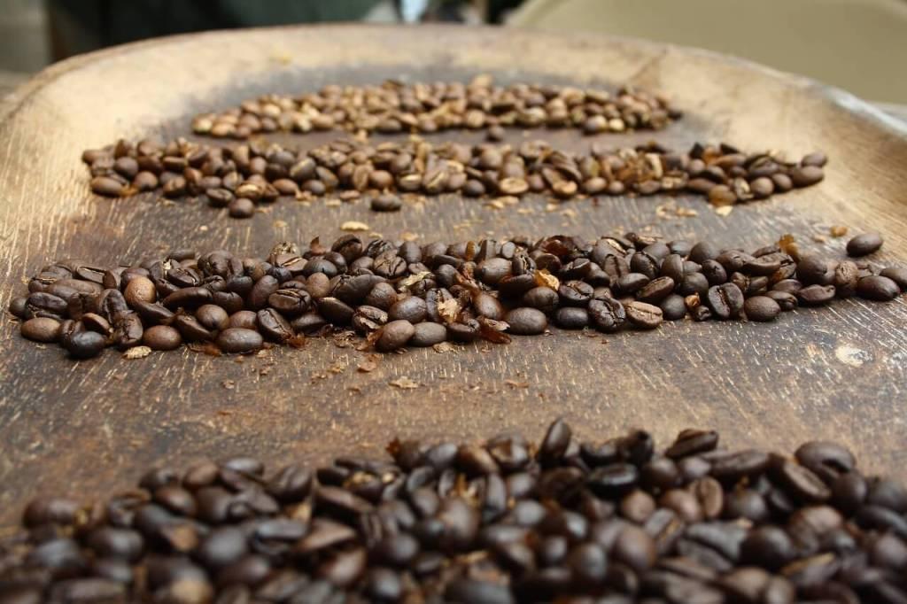 kaffeebohnen panama