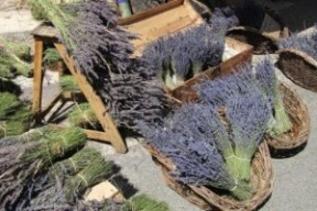 Lavender in a French market in the South of France. Source: 123rf.com