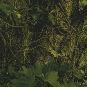"""Novemthree"" by Olaf Marshall. Source: vitaignescorpuslignum.blogspot.com"