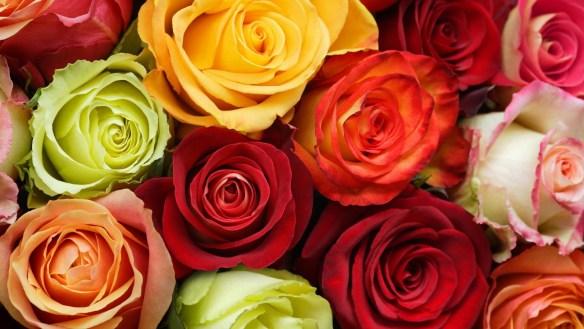 Source: it.wallpaperpics.net
