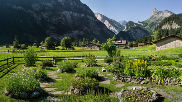 Ricola herb garden, Switzerland. Source: myswitzerland.com