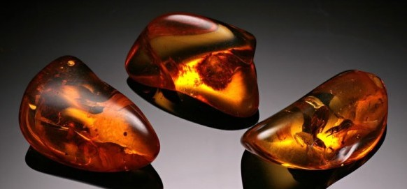 Fossilized amber. Source: amberpieces.com