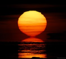 """""""Sinking Sun and Green Flash,"""" by Pekka Parviainen at TWAN. (Direct website link embedded within.)"""