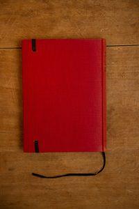 Notitieboek van het boek De wind in de wilgen   gemaakt door Kaftwerk.com