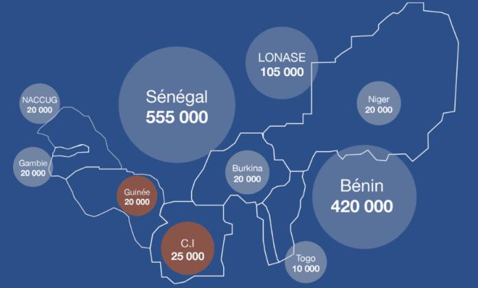 Marché africain (1 220 000 cartes)