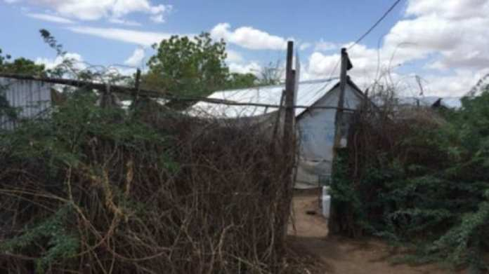 Les Ougandais de ce camp sont les seuls réfugiés à fuir un pays sans guerre ni conflit