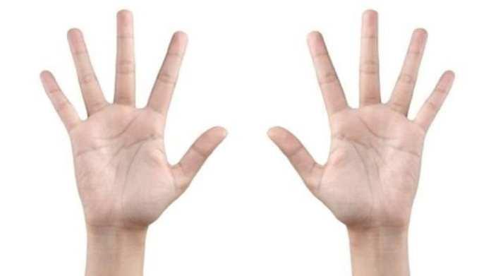 Chez les femmes, l'index et l'annulaire sont généralement de même longueur, tandis que chez les hommes, la différence est plus grande entre les deux.