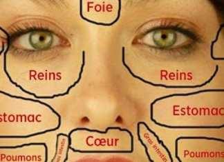 Cette-carte-du-visage-de-la-medecins-chinois-permet-didentifier-quelle-partie-du-corps-est-malade-et-comment-la-soigner-725x375