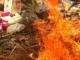 Incinération de 3 tonnes de produits impropres à la consommation (Sédhiou)
