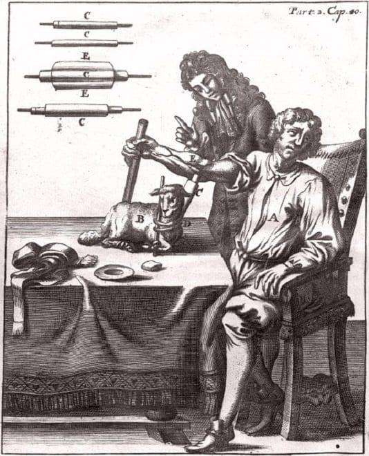 Médecin transfusant à un patient le sang d'une brebis