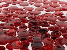 blood-cells