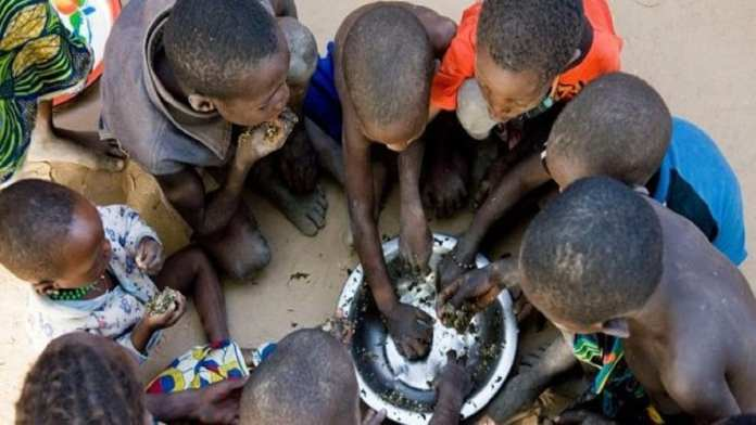 177 millions de personnes ont faim en Afrique de l'Ouest (Rapport Fao)
