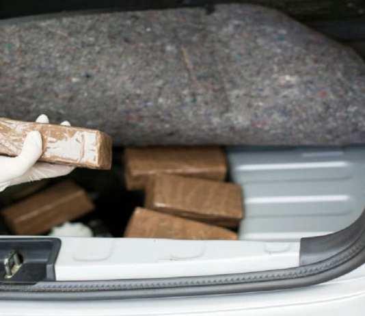 Canada un journaliste utilise son stagiaire pour faire passer 40 kg de cocaïne
