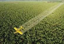 église - Le pilote s'est concentré sur les supermarchés, les écoles ainsi que les fermes et champs voisins. | Romeo Gacad / AFP