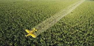 église - Le pilote s'est concentré sur les supermarchés, les écoles ainsi que les fermes et champs voisins.   Romeo Gacad / AFP