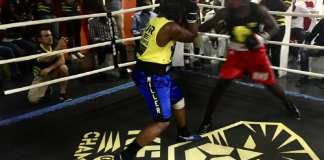 320 boxeurs attendus à Dakar pour le Tournoi de qualification (JO 2020)