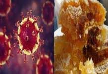 Coronavirus : un remède à base de miel proposé par une communauté sénégalaise