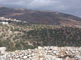 Israël bloque les exportations agricoles palestiniennes