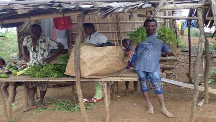 Vendeur de khat dans le nord de Madagascar en 2017 ArnaudJouve